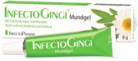Infectogingi Mundgel 6 g Gel